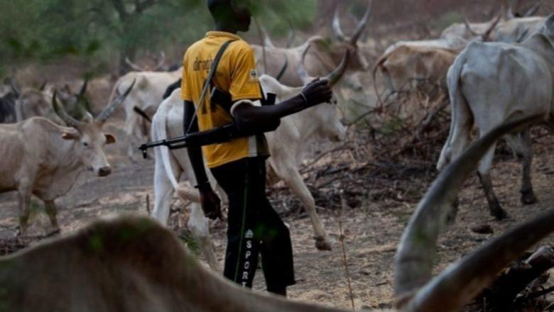 Da Duminsa: Fulani Makiyaya sun sake kai harin Ramuwar gayya jihar Ogun inda suka kashe 4