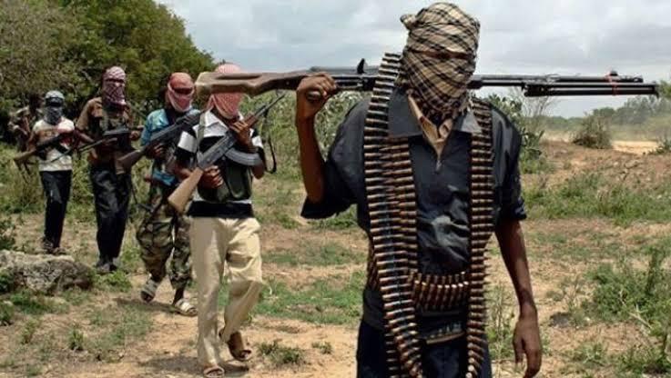 Kazamin fada na ci gaba da aukuwa tsakanin 'yan Boko Haram suna ta kashe juna